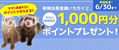 newshop1000_main